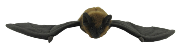 Antics: Long Tailed Bat - NZ Plush