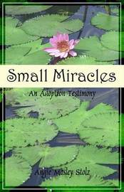 Small Miracles by Angie Mosley Stolz image