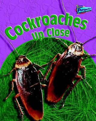 Cockroaches Up Close by Robin Birch