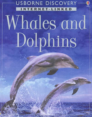 Discovery Program: Dolphins and Whales by Susannah Davidson image