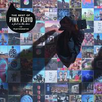 The Best Of Pink Floyd: A Foot In The Door by Pink Floyd