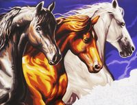 Paint by Numbers - Wild Horses