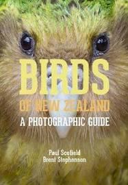 Birds of New Zealand by Paul Scofield