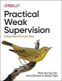 Practical Weak Supervision by Wee Hyong Tok