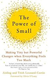 The Power of Small by Aisling Curtin