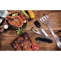 5 in 1 BBQ Tool Set image