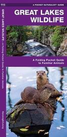 Great Lakes Wildlife: A Folding Pocket Guide to Familiar Species by Senior Consultant James Kavanagh (Senior Consultant, Oxera Oxera Oxera)