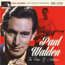 The Voice of Aotearoa by Paul Walden image