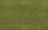 "JTT: Z Scale Grass Mats (19"" - 25"") - Moss Green"