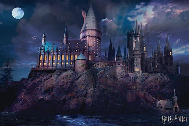 Harry Potter Maxi Poster - Hogwarts (861)
