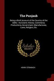 The Punjaub by Henry Steinbach image