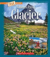 Glacier by Joanne Mattern