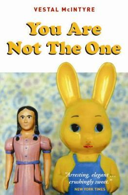 You Are Not The One by Vestal McIntyre image