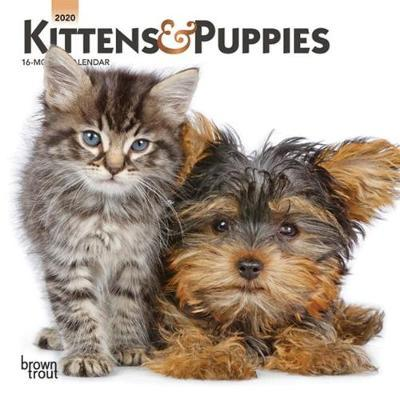 Kittens & Puppies 2020 Mini Wall Calendar