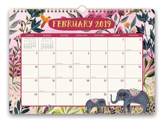 Sonia Cavallini: Stay Magical 2019 Wall Calendar