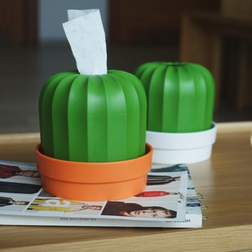 Qualy Cactiss Tissue Holder (Orange/Green)