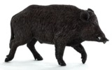 Animal Planet - Wild Boar