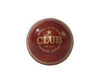 Regent Cricket Ball (156g)