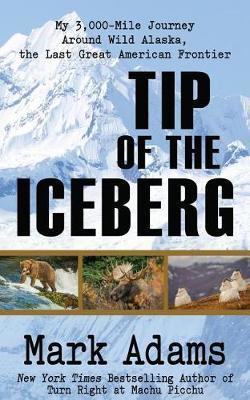 Tip of the Iceberg by Mark Adams