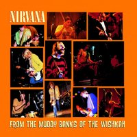 From The Muddy Banks Of The Wishkah (Live) by Nirvana