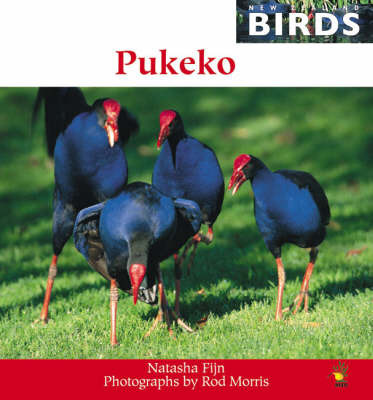Pukeko (New Zealand Birds Series) by Natasha Fijn image