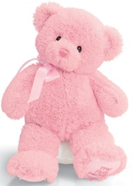 "Gund: My First Teddy 10"" - Pink"