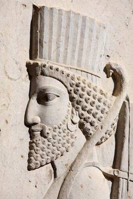 Bas-Relief of Persian Soldier from Persepolis Iran Journal by Cool Image