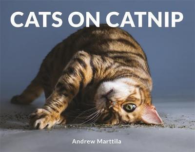 Cats on Catnip by Andrew Marttila