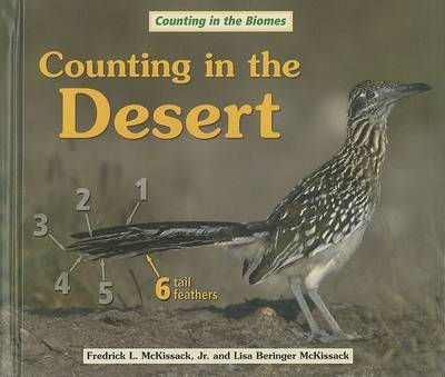 Counting in the Desert image