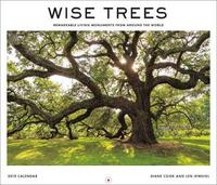 Wise Trees 2019 Wall Calendar by Diane Cook