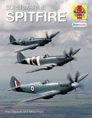 Supermarine Spitfire (Icon) by Blackah Price