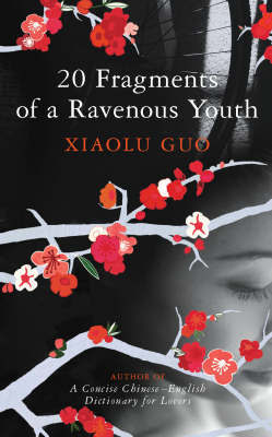 20 Fragments of a Ravenous Youth by Xiaolu Guo image