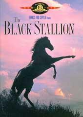 The Black Stallion on DVD
