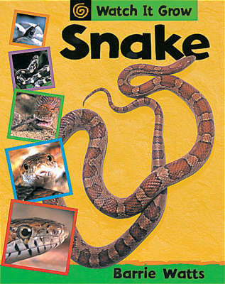 Snake by Barrie Watts