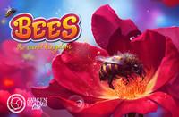 Bees: The Secret Kingdom - Card Game