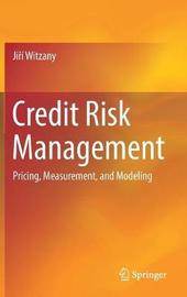 Credit Risk Management by Jiri Witzany image