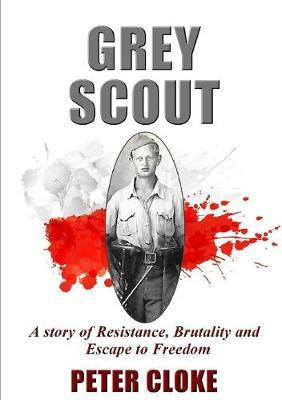 Grey Scout by Peter Cloke image