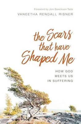 The Scars That Have Shaped Me by Vaneetha Rendall Risner image