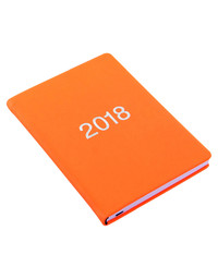 Letts 2018 Diary A6 Week to View (Orange)