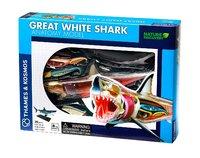 Thames & Kosmos: Great White Shark - Anatomy Model