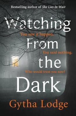 Watching from the Dark by Gytha Lodge