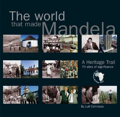 The world that made Mandela by Luli Callinicos image