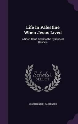 Life in Palestine When Jesus Lived by Joseph Estlin Carpenter image