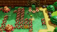 The Legend of Zelda: Link's Awakening for Switch image