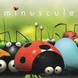 Minuscule - Card Game