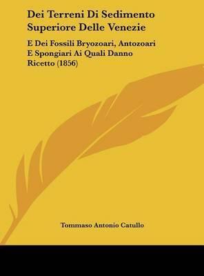 Dei Terreni Di Sedimento Superiore Delle Venezie: E Dei Fossili Bryozoari, Antozoari E Spongiari AI Quali Danno Ricetto (1856) by Tommaso Antonio Catullo