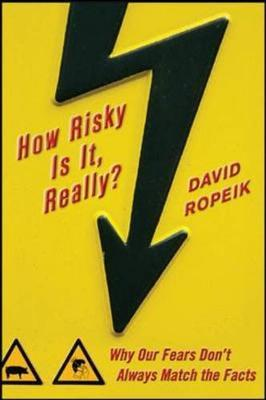 How Risky Is It, Really? by David Ropeik image