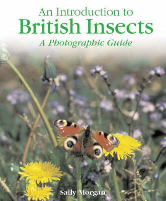 British Insects by Sally Morgan