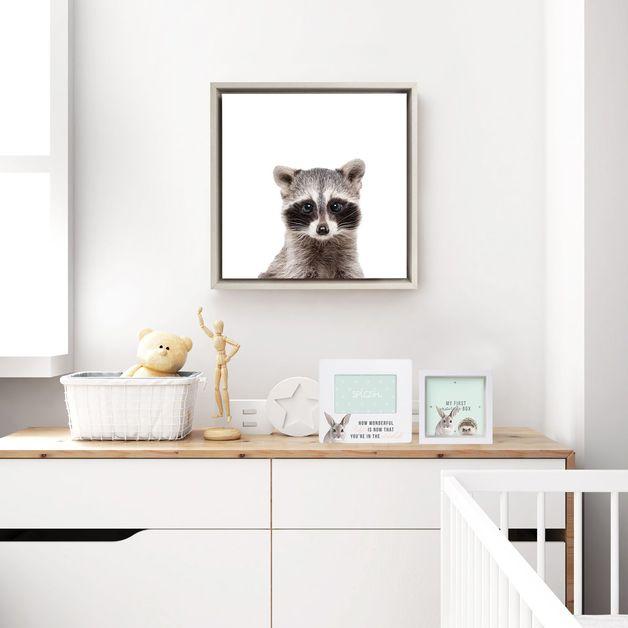 Splosh: Baby Framed Canvas - Racoon (34x34cm)