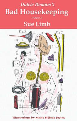 Bad Housekeeping by Sue Limb